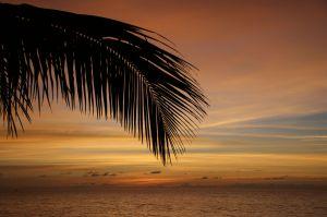 Sunsetws.jpg